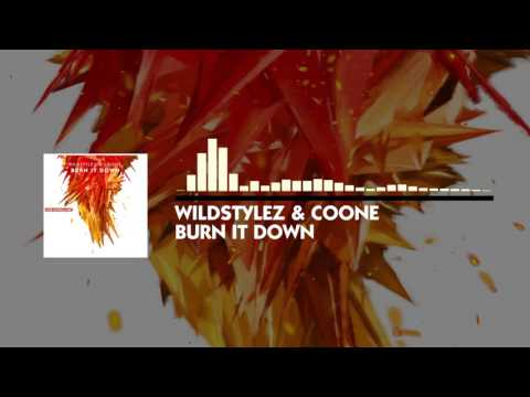 Wildstylez & Coone - Burn it Down