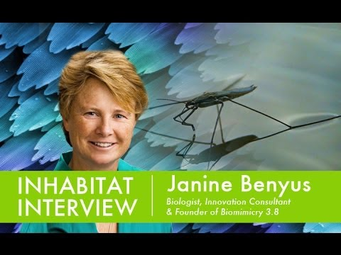 Inhabitat Interview with Janine Benyus, Founder of Biomimicry Institute