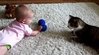 Маленький ребенок играет с кошкой