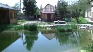 Плавательный пруд 400м2