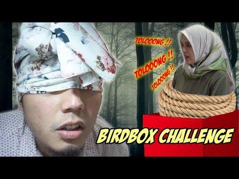 Bird Box Challenge #VLOGRNG