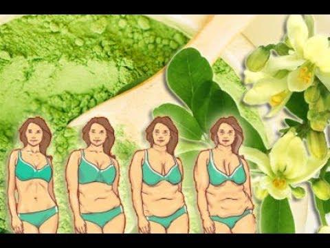 Moringa Oleifera Gewicht verlieren mit dem heilsamen Meerrettich Superfood