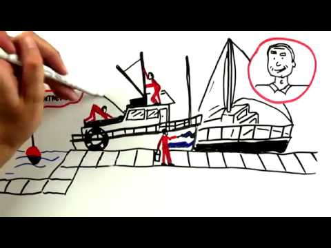 Services pour les plaisanciers : l'Amiral Nautic Club - achat / vente de bateaux, place de port...