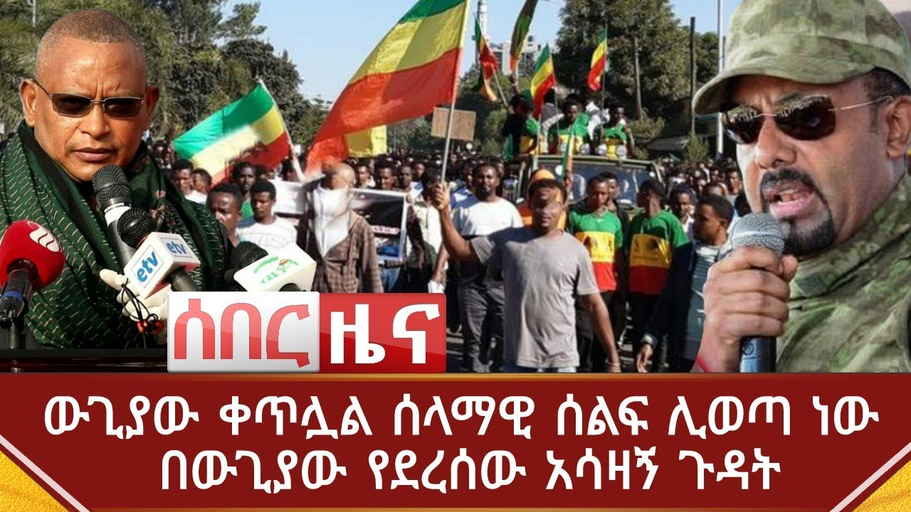 A peacefull rally to be held on different parts of Ethiopia