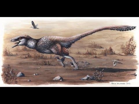 Tribute to Dakotaraptor