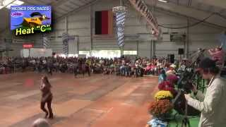 2014 Frankenmuth Oktoberfest Wiener Dog Races - The Heats & Finals