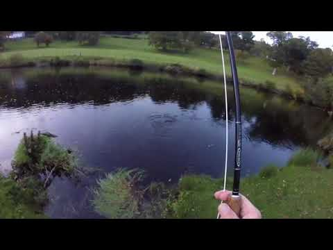 Salmon Fly Fishing On The Welsh Dee At Llangollen
