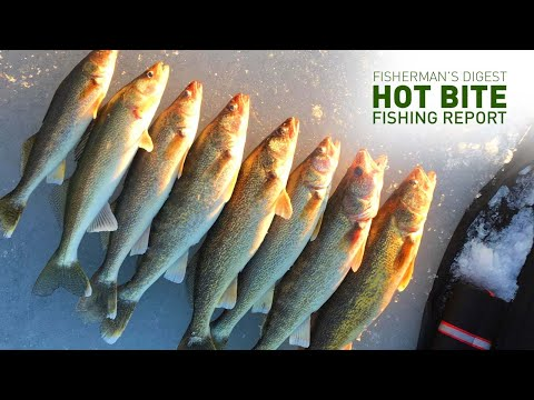 Ice Fishing In Cadillac And More - Hot Bite Fishing Report - Feb 12th
