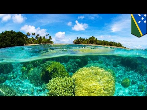 Global sea level rise: climate change already submerged 5 islands in Solomon archipelago - TomoNews