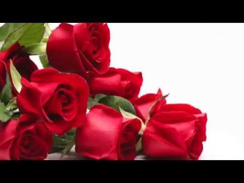 Mi regalo de dia de las madres - 3 part 7