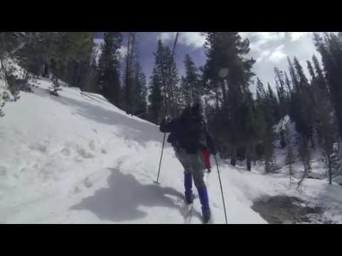 Yellowstone National Park Winter Skiing