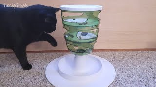Cats Try The Catit Senses 2.0 Food Tree For The First Time
