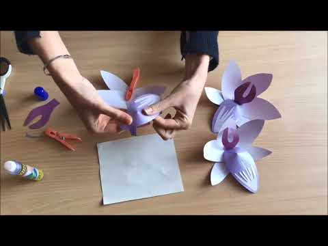How to make a paper orchid - Christmas at Kingston Lacy 2018