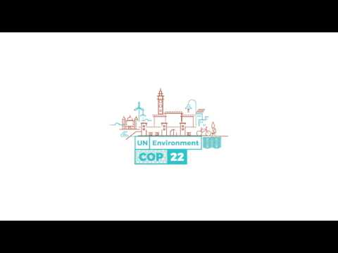COP22 - High Level Forum on South-South Cooperation & Technology Transfer to the Zero Carbon Economy