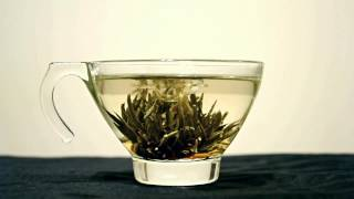 Blooming Tea, Golden Joy (time Lapse)