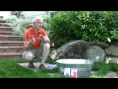 Kong Zoom Groom Pet Bathing Brushes