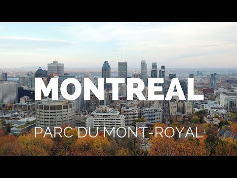 Parc du Mont Royal in Fall, Montreal