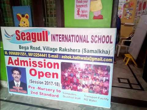 Seagull school  Raksera