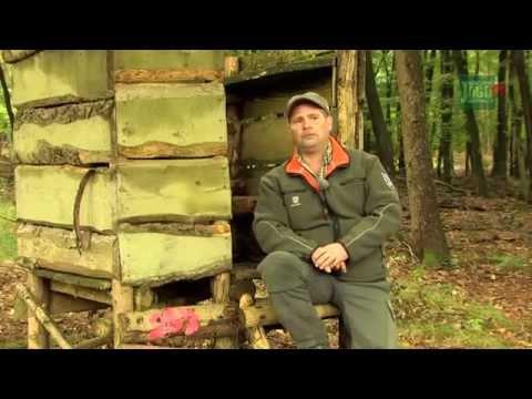 DJZ-TV: Große DJZ-Drückjagd in Bad Camberg 2011
