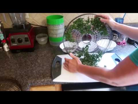 Dehydrating Fresh Herbs - So Simple You'll be Addicted!