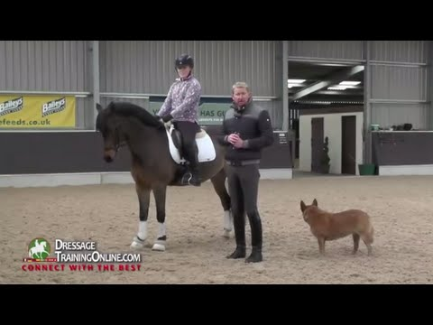 Dressage Training with Gareth Hughes on Rider Position and seat