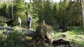 5/5 Storm Damage at Shell Creek Campground 7/8/19 (Bighorn National Forest)