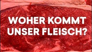 Vom Hof zum Schlachter: Welchen Weg unser Fleisch zurücklegt | Tiertransporte