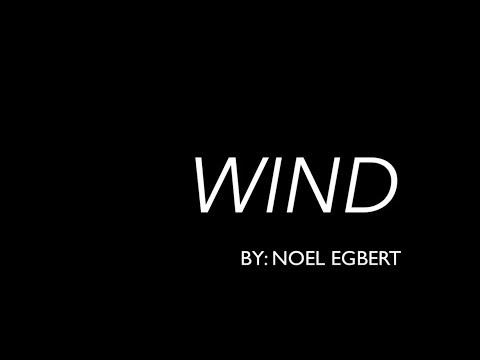Noel's American Artist Video