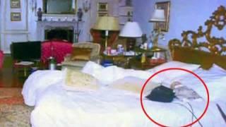 Michael Jackson Death Hoax: MJ s Doll Clue Pt. 1