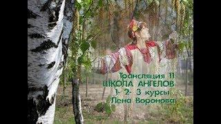 Трансляция 11. полная версия /Лена Воронова