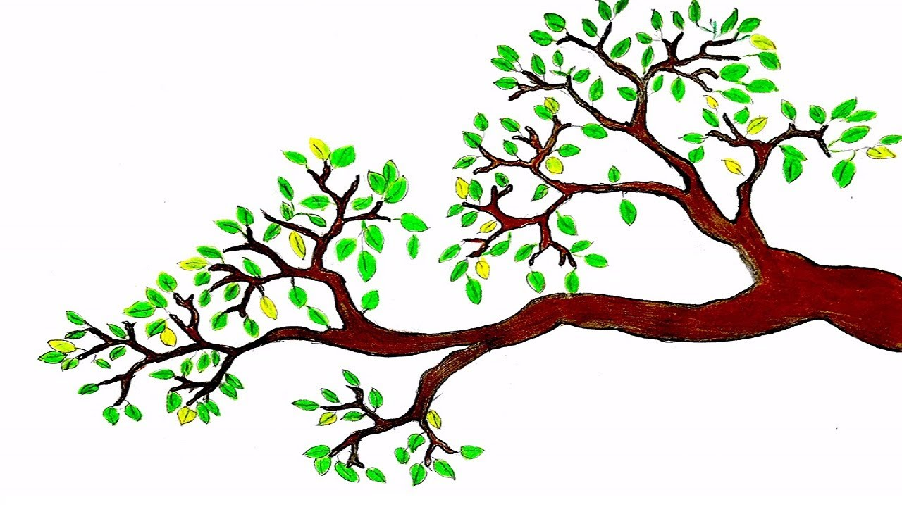 How to draw a branch with leaves | Tree Drawing for ...