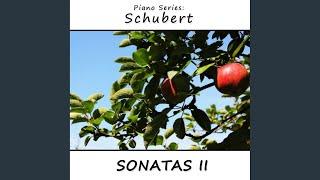 6 Moments Musicaux, D780, Op. 94: III Allegretto Moderato