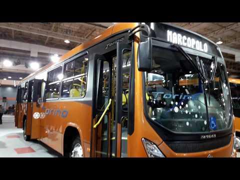 NOVO TORINO MARCOPOLO : TRANSPÚBLICO 2018
