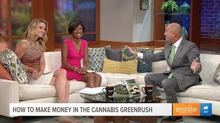 Pete Asmus Speaking about Cannabis Investing on CBS Washington DC July 11, 2018