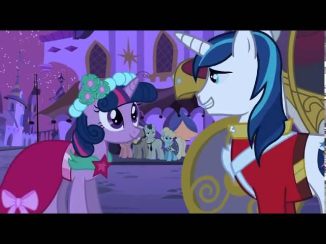 Princess Cadance & Shining Armors Wedding Party