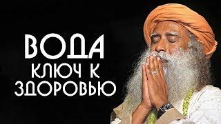 Вода ключ к здоровью относитесь к воде с почтением Садхгуру на Русском