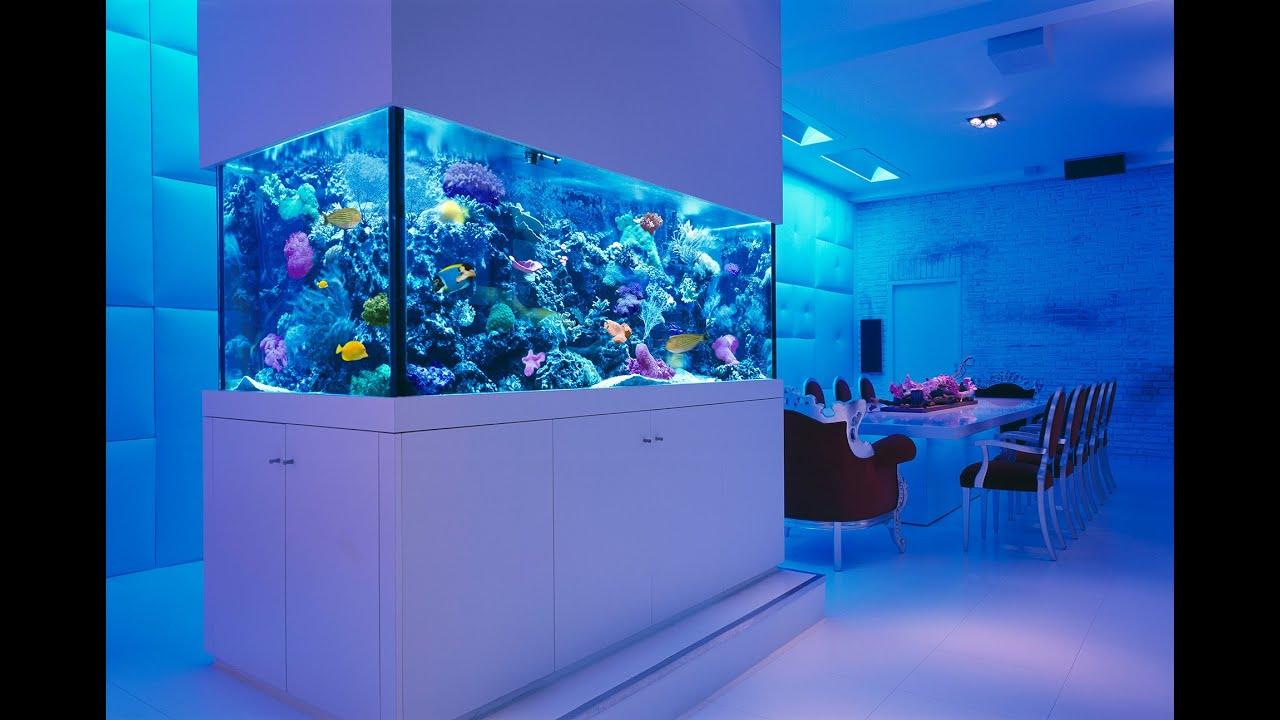 living room aquarium - youtube