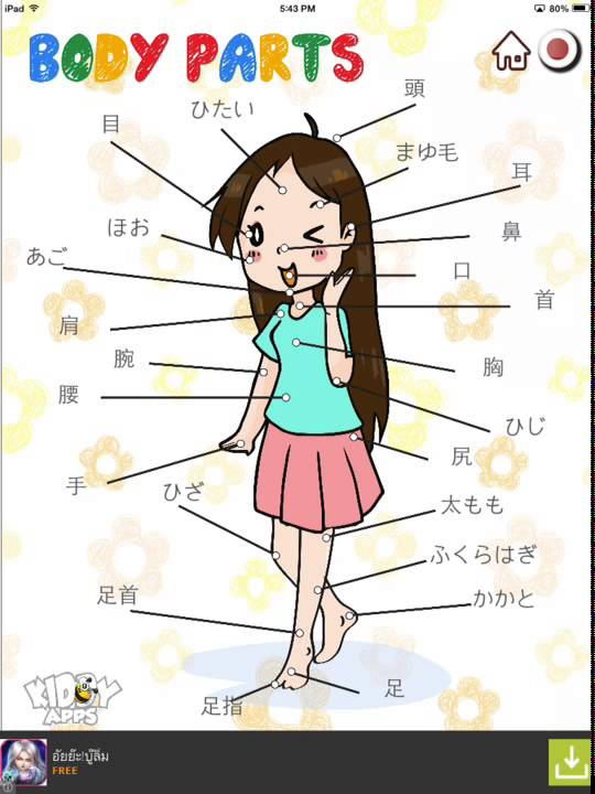 Body Parts In Japanese Language  Body Parts By Kiddy Apps