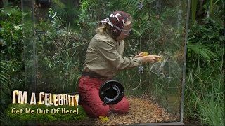 Kendra And Mel's Bushtucker Trial: The Critter Conveyor | I'm A Celebrity... Get Me Out Of Here!