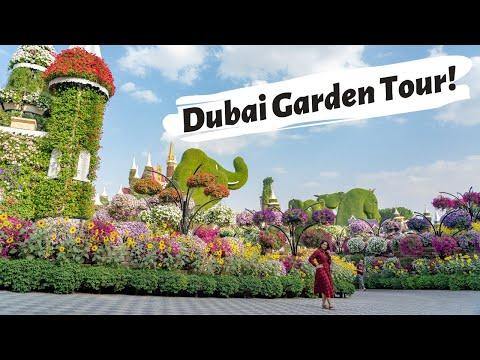 Dubai's Miracle Garden 2020 | Dubai Butterfly Garden 2020 | Best Places to Visit As A Tourist