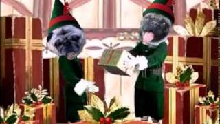 Happy Holidays From Ohio Pug Rescue Pugs
