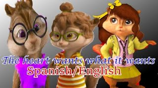 Klaudia, Harry & Areli - The heart wants what it wants Spanish/English