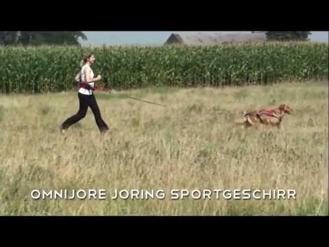 Ruffwear Omnijore Joring Zuggeschirr Hundegeschirr Sportgeschirr Jogging Geschirr