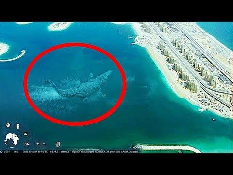 10 Самых Больших Существ в Мире, Обнаруженных на Google Maps