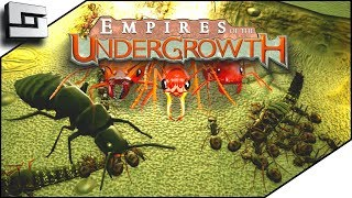 I AM AN ANT GOD! Empires of the Undergrowth Gameplay Ep 1