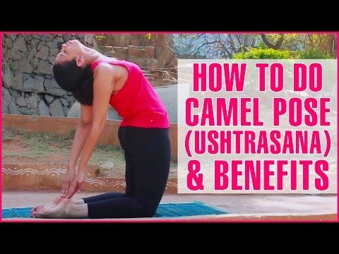 How To Do USTRASANA YOGA (Camel Pose) & Its Health Benefits