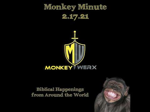 Monkey Minute Biblical News for Feb 17 2021