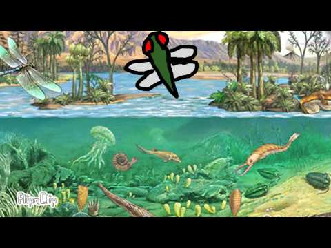 paleozoic era YouTube