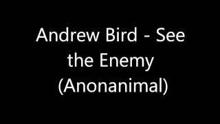 Andrew Bird - See the Enemy (Anonanimal) HD