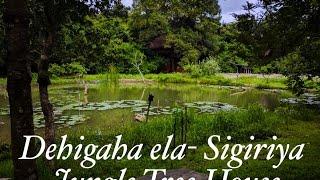 Sigiriya Village-Dehigaha Ela Tree House